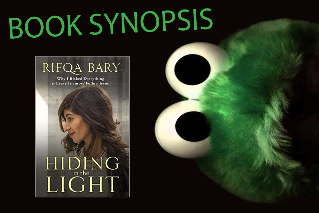 Book Synopsis - Hiding in the Light